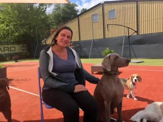 Helping out my friend who is a professional dog sitter in Switzerland: https://www.hundesitter-aargau.ch/team/