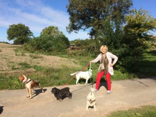 kathie with pet sitting dogs