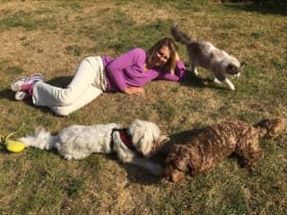 Leo, Bramble & Woody with Elisabeth, Summer 2016