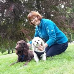 Laura and Tacoma pups