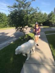 Walking Roger in Bluffton South Carolina. He was a big sweet teddy bear.