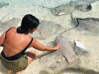 Nuria feeding a manta in Maldives