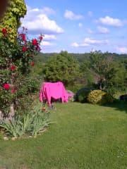 Garden & garden view
