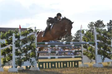 Q was a horse I trained and showed for my mom - this is a competition in Palmer Divide, CO
