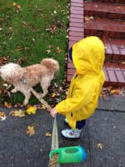 Cold, rain and snow, we WILL go for a walk!
