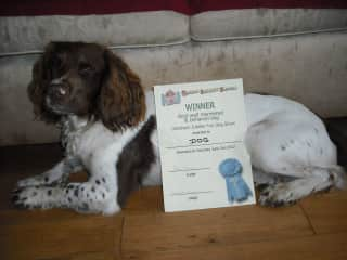 Dog with his certificate.