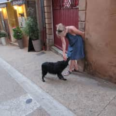 A dog lover in France