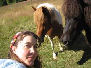 Two horses I befriended on my daily walk when I lived on Orcas Island, WA
