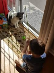 Reuben during kitty playtime :)
