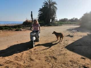 On Playa Las Palmeras near San Juan de los Terreros