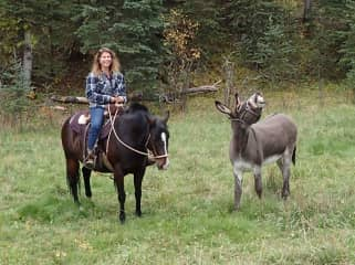 Out for a ride with my donkey