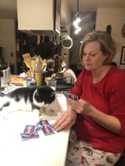 Teresa playing Phase 10 with Buddy in Lancaster PA.