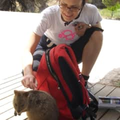 Luisa with a Quokka.