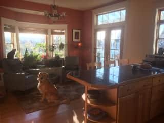 Sunny breakfast bar and family room
