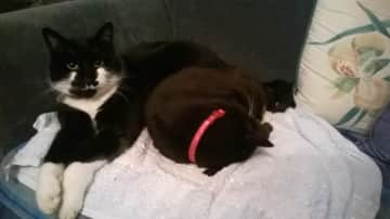 Our youngest Male and Oldest Female  (9 Yrs and 16 Yrs)