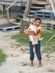 Puppy love in San Pedro, Belize
