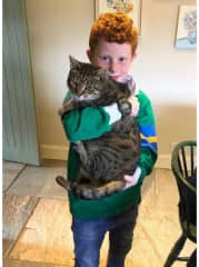 Hamish is a big cuddly laid back rescue cat. So easy. He will sleep on a bed during the day and use the cat flap. No problem.