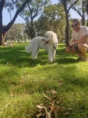 Nala's walk at Centennial Park