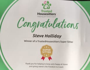 Super Sitter Award from THS