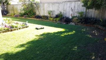 Bit of the back yard