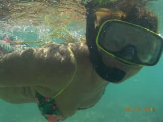 Snorkelling in the Turks and Caicos.