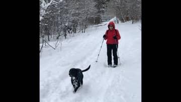 Sue & Sadie snowshoeing (housesit in Ogden, Utah)