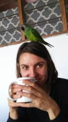 Sarah and a parrot friend