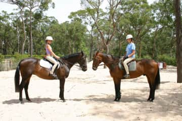 Circa 2004, my daughters with their horses on our arena