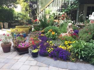 flower garden will need watering