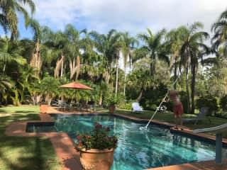 Daily pool maintenance