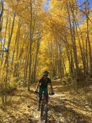 Beautiful fall colors in the San Juan mountains—essentially my backyard!!f