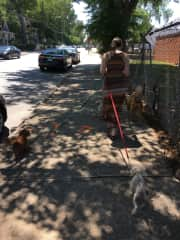 Our daily walks in Atlanta