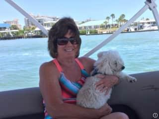 Cupcake loves boat rides