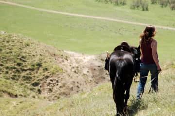 Riding in Georgia