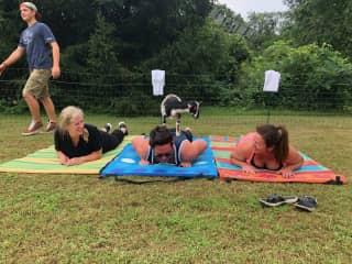 Yoga in Saratoga NY with goats!