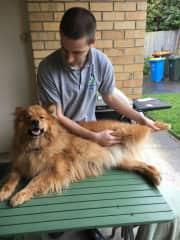 Me giving Freya a professional massage