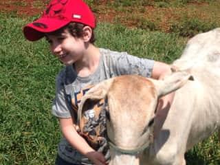 Rafael hugging a cow!