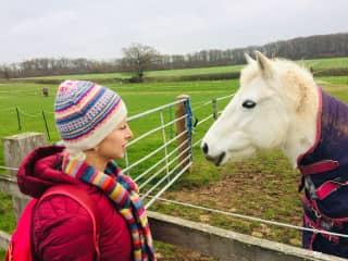 Connecting with horse care