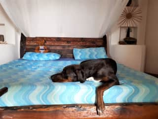 I am Sole and it is wonderful to sleep in the House Sitter bed, Kenya 2019