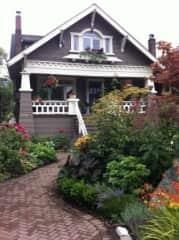 My front garden in the Kitsilano neighbourhood