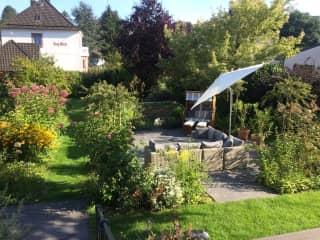Our garden in spring