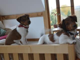 Otis and Ella