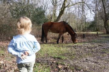 Elena loves all animals...