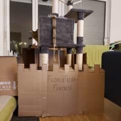 Building things, like a fortress for Floki and Freida. (Frankfurt, Germany)