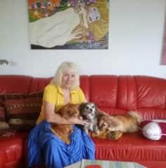 Katya with 3 dogs