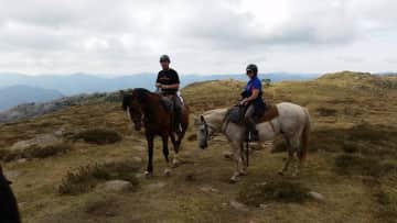 Our greatest love we share together....horses. High Country Victoria