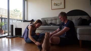 Bam Bam and Loui; Housesit in Melbourne
