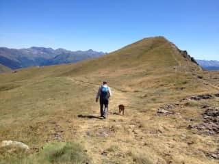 Lexi always loves a big hike