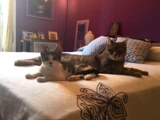 Bubu&Ariel