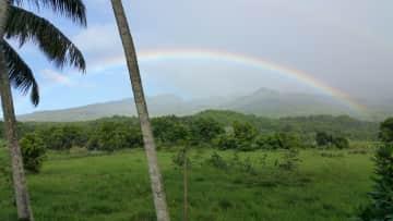 Rainbows in Hawaii
